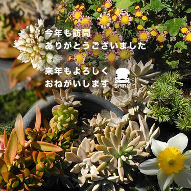 2014_12_31.jpg
