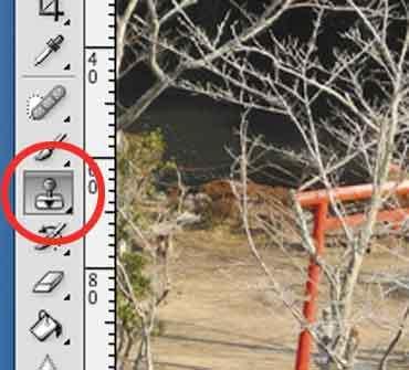 Photoshop _stamp_t2012_01.jpg