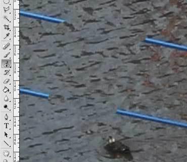Photoshop _stamp_t2012_02.jpg